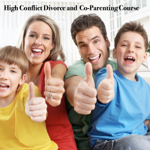Online high conflict course
